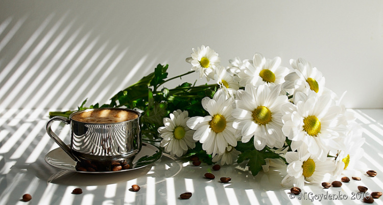Фото с добрым утром цветы