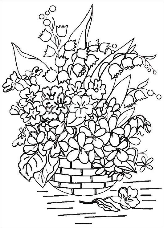 Выращивание цитрусовых как бизнес 68